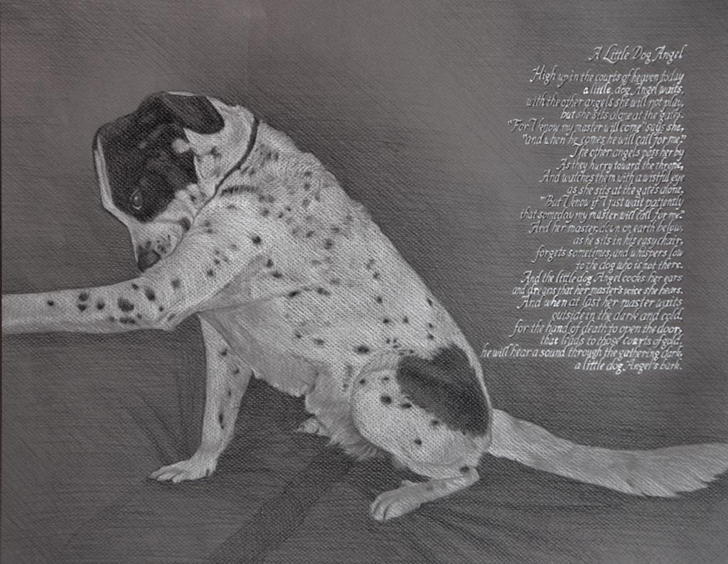 angel dog rich fallat drawing charcoal