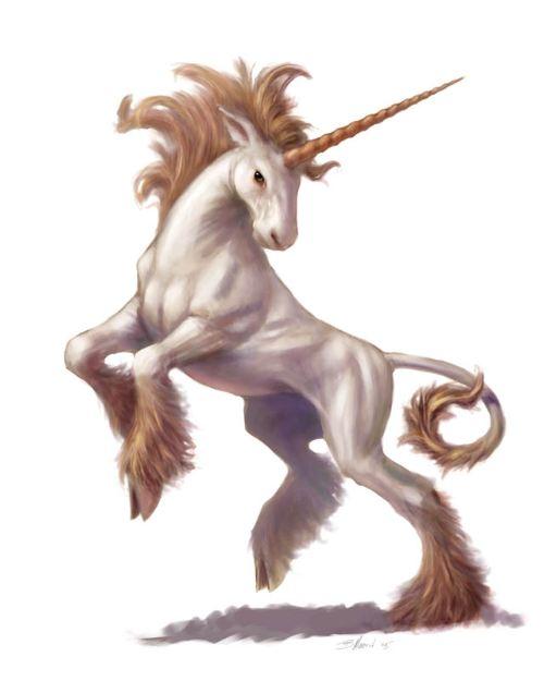 unicorn | richfallatjr.com